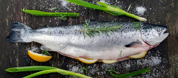 Salmon Whole Gutted 3- 3.5KG